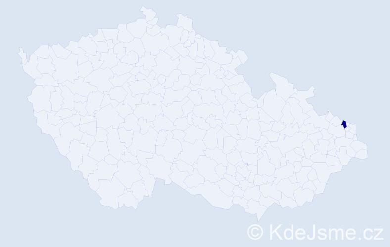 """Příjmení: '""""Kniezková Brňáková""""', počet výskytů 1 v celé ČR"""
