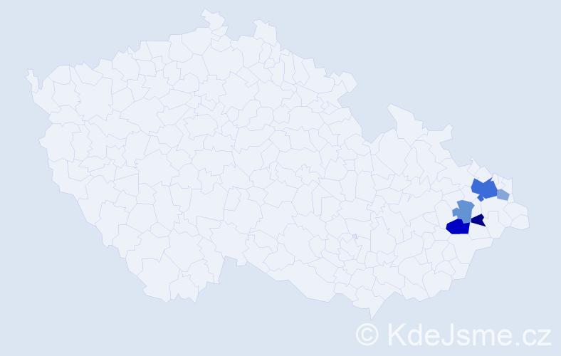 Příjmení: 'Ivasjuk', počet výskytů 11 v celé ČR