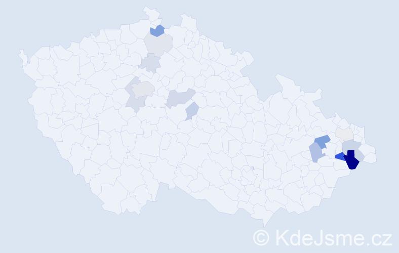 Příjmení: 'Hrubišová', počet výskytů 41 v celé ČR