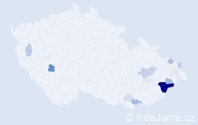 Příjmení: 'Čotková', počet výskytů 64 v celé ČR