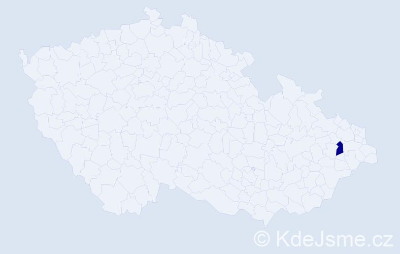 """Příjmení: '""""Kaczmarek Křižanová""""', počet výskytů 1 v celé ČR"""