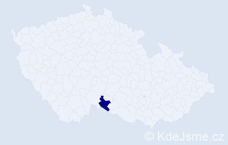 """Příjmení: '""""Guevarová-Coreová""""', počet výskytů 1 v celé ČR"""