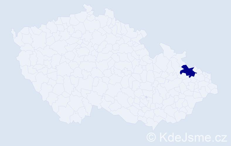 """Příjmení: '""""Grigarčíková Prokšová""""', počet výskytů 1 v celé ČR"""