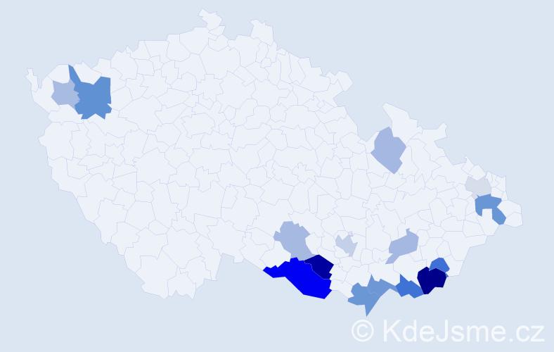 Příjmení: 'Hrnčářová', počet výskytů 33 v celé ČR