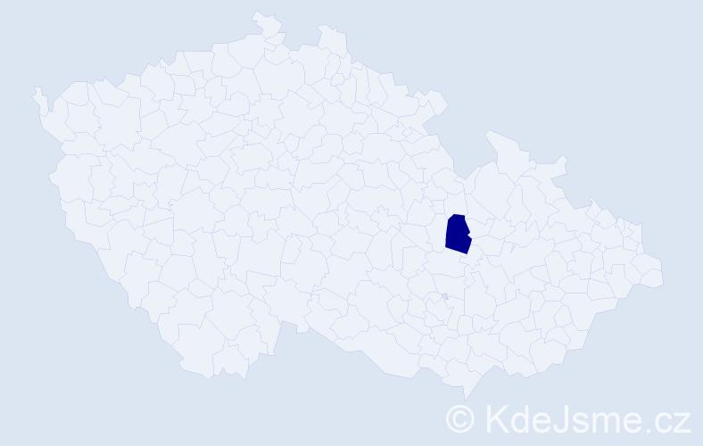 """Příjmení: '""""Čubrdová Šodková""""', počet výskytů 1 v celé ČR"""
