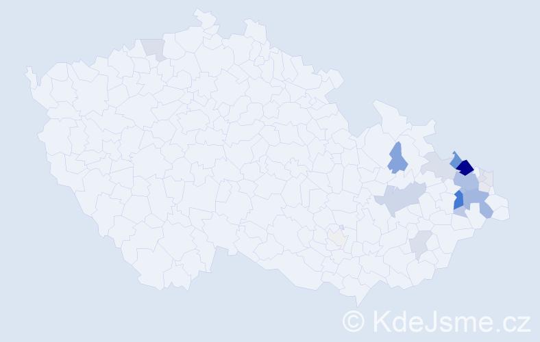 Příjmení: 'Hajduček', počet výskytů 73 v celé ČR