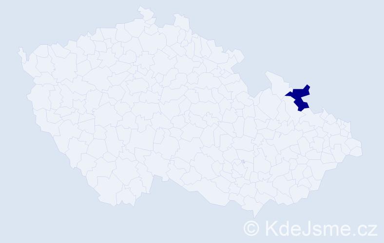 """Příjmení: '""""Došlíková Jordan""""', počet výskytů 1 v celé ČR"""