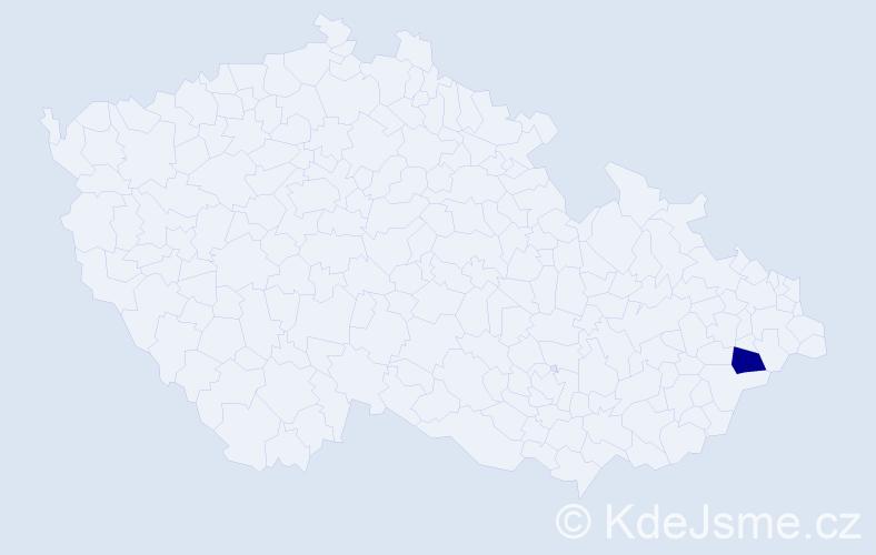 """Příjmení: '""""Bernátková Vraštilová""""', počet výskytů 1 v celé ČR"""