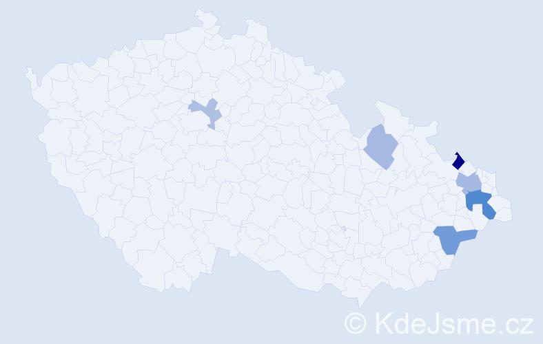 Příjmení: 'Bavlšík', počet výskytů 13 v celé ČR