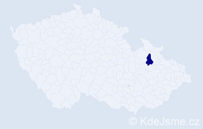 """Příjmení: '""""Apking Chárníková""""', počet výskytů 1 v celé ČR"""