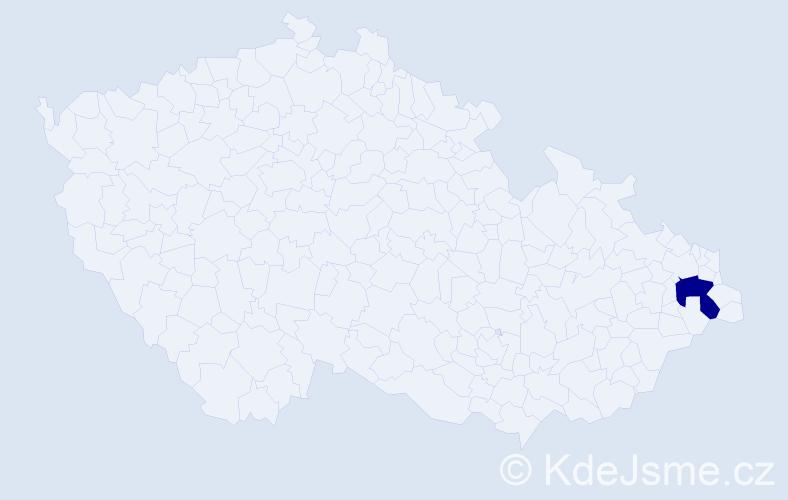"""Příjmení: '""""Kartaš Franková""""', počet výskytů 1 v celé ČR"""