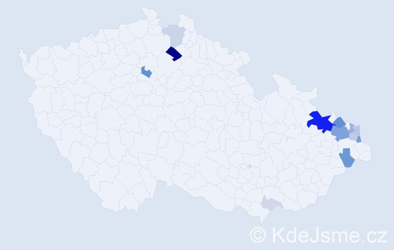 Příjmení: 'Kašing', počet výskytů 52 v celé ČR
