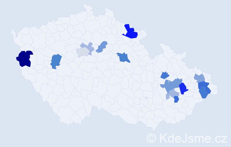 Příjmení: 'Kirnigová', počet výskytů 35 v celé ČR