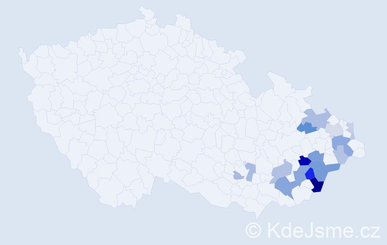 Příjmení: 'Dubčák', počet výskytů 67 v celé ČR