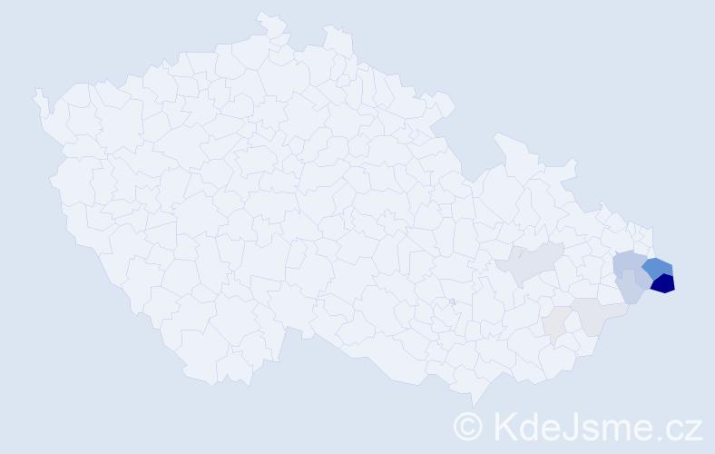 Příjmení: 'Kwaczková', počet výskytů 34 v celé ČR