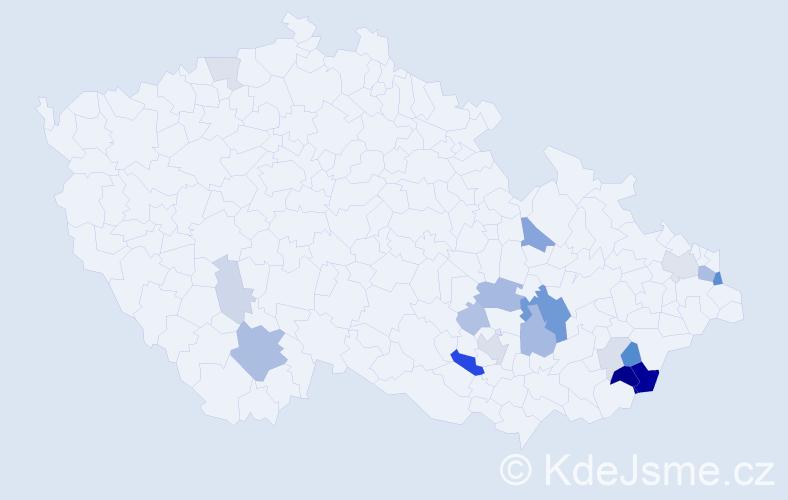 Příjmení: 'Hyblová', počet výskytů 49 v celé ČR