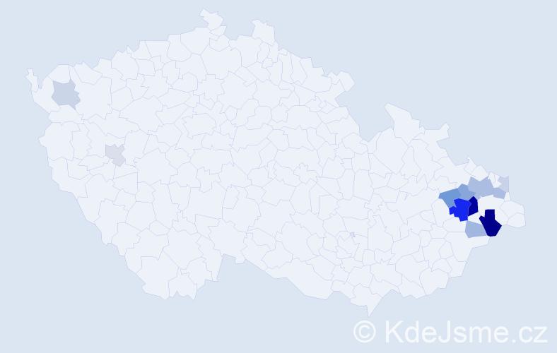 Příjmení: 'Kowalik', počet výskytů 30 v celé ČR