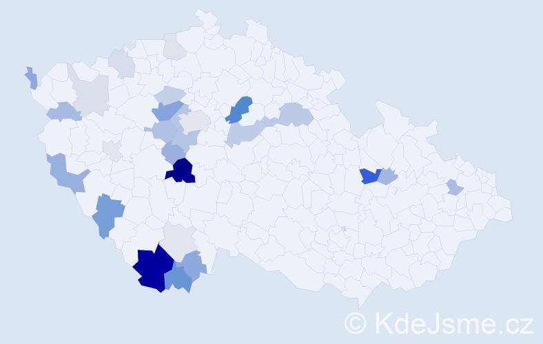 Příjmení: 'Hončík', počet výskytů 64 v celé ČR