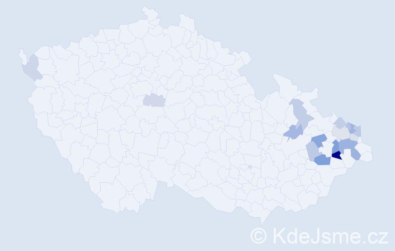 Příjmení: 'Beinstein', počet výskytů 30 v celé ČR