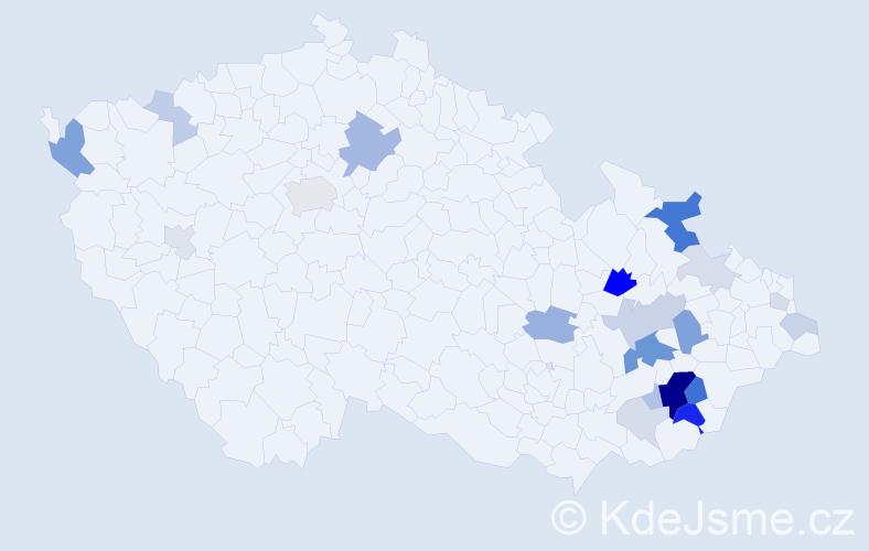 Příjmení: 'Cekota', počet výskytů 60 v celé ČR