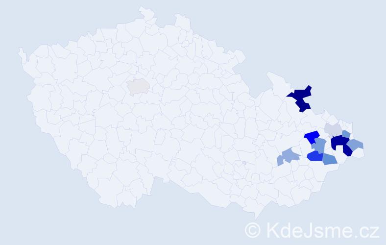 Příjmení: 'Lajgot', počet výskytů 20 v celé ČR