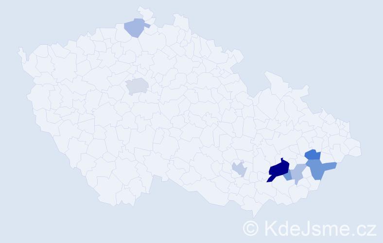 Příjmení: 'Berdník', počet výskytů 18 v celé ČR