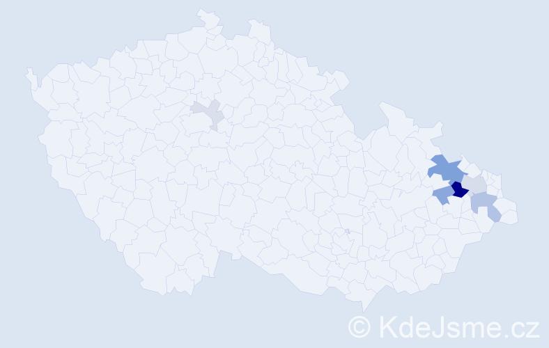 Příjmení: 'Čaverová', počet výskytů 21 v celé ČR