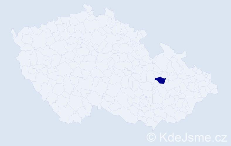 """Příjmení: '""""Krahulcová Doleželová""""', počet výskytů 1 v celé ČR"""