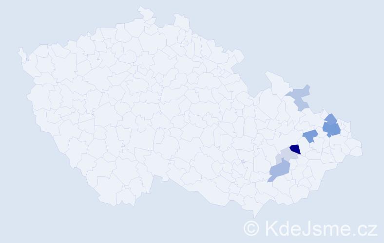 Příjmení: 'Kainer', počet výskytů 22 v celé ČR