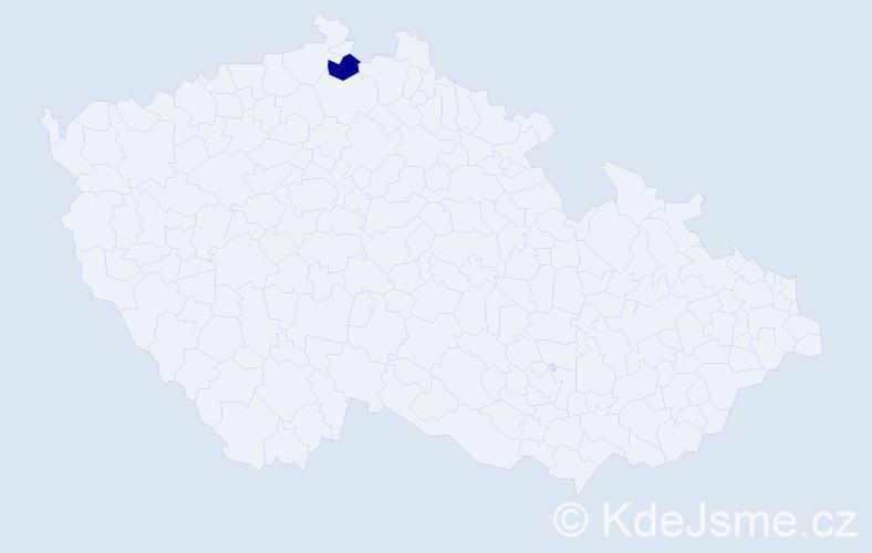 """Příjmení: '""""Hudson Motyková""""', počet výskytů 1 v celé ČR"""