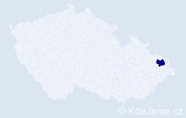 """Příjmení: '""""Hlaváček Ulmannová""""', počet výskytů 1 v celé ČR"""
