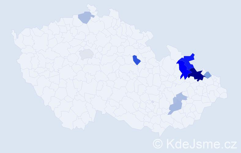 Příjmení: 'Bartkovská', počet výskytů 21 v celé ČR