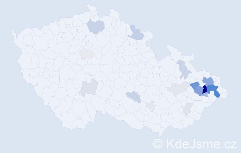 Příjmení: 'Hrnčárek', počet výskytů 64 v celé ČR