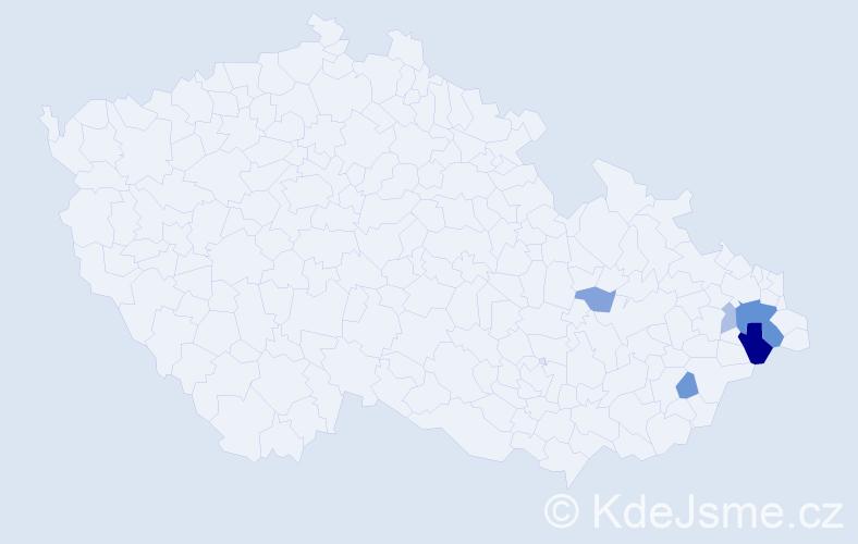 Příjmení: 'Indrst', počet výskytů 13 v celé ČR