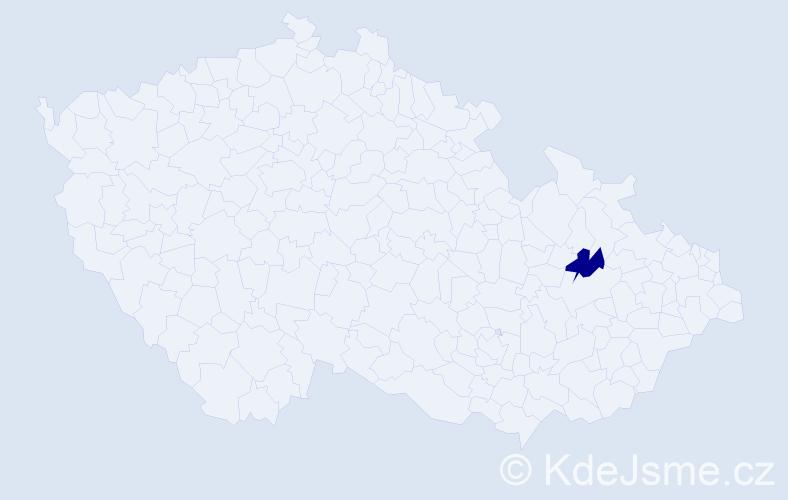 """Příjmení: '""""Chignier Tiefenbachová""""', počet výskytů 1 v celé ČR"""