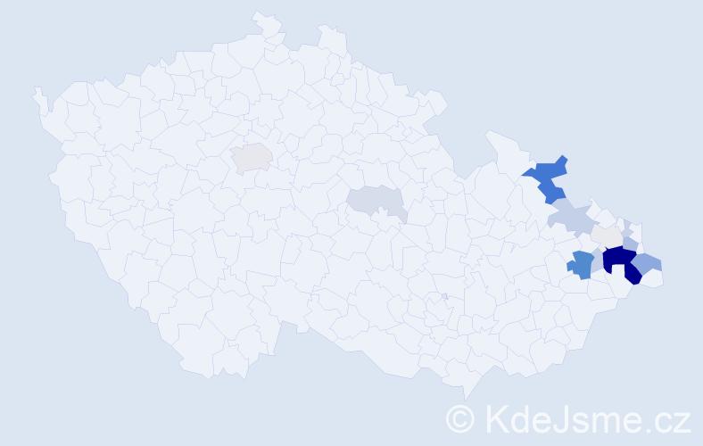 Příjmení: 'Čubok', počet výskytů 51 v celé ČR