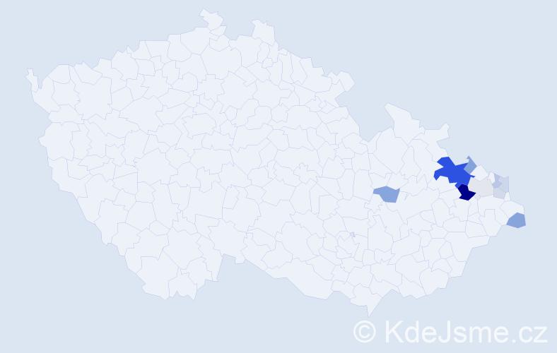 Příjmení: 'Beilnerová', počet výskytů 22 v celé ČR