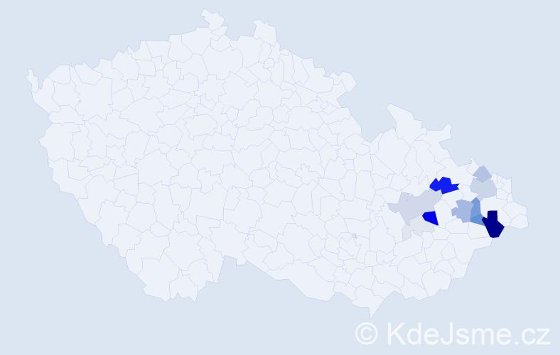 Příjmení: 'Lupíková', počet výskytů 41 v celé ČR