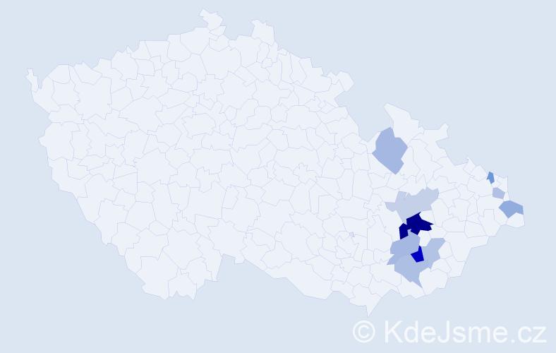 Příjmení: 'Abšnajdr', počet výskytů 18 v celé ČR