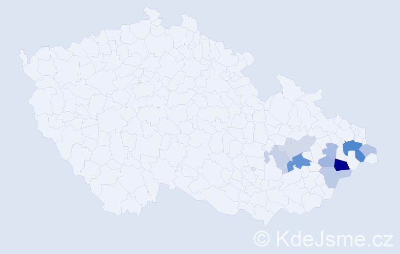 Příjmení: 'Lajgotová', počet výskytů 21 v celé ČR