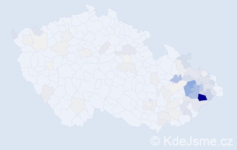 Příjmení: 'Maléř', počet výskytů 312 v celé ČR