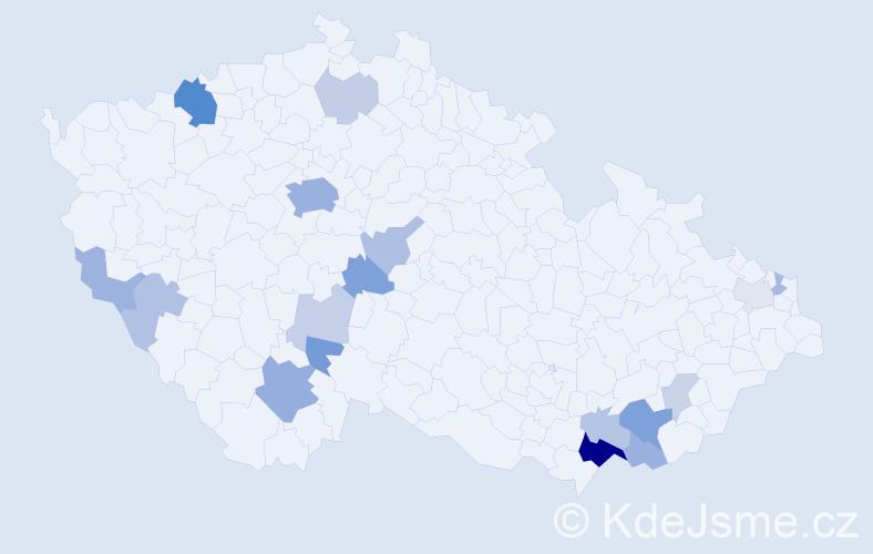 Příjmení: 'Ammerová', počet výskytů 49 v celé ČR