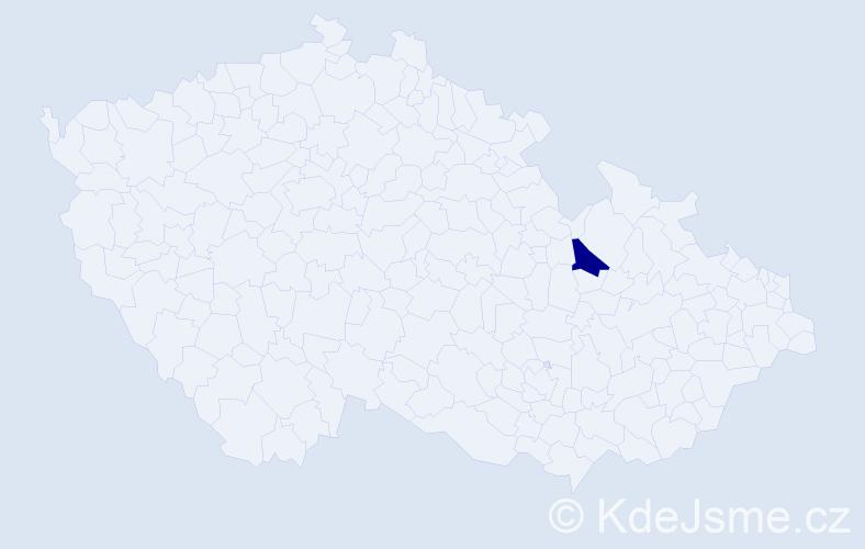 """Příjmení: '""""Hanousková Klimešová""""', počet výskytů 1 v celé ČR"""