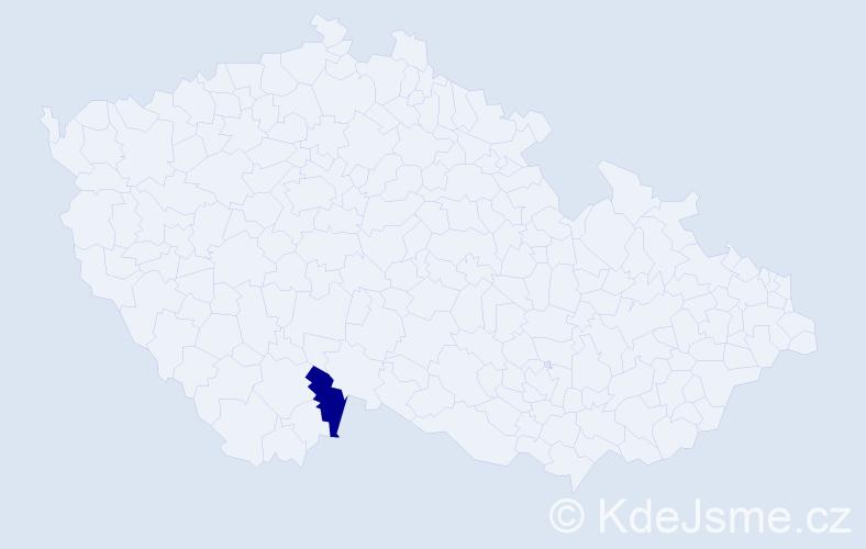 """Příjmení: '""""Cernetic Pexová""""', počet výskytů 1 v celé ČR"""