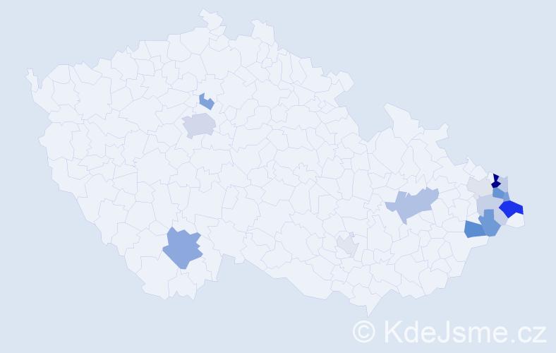 Příjmení: 'Kaminski', počet výskytů 35 v celé ČR