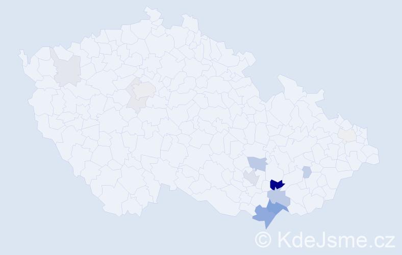 Příjmení: 'Hebron', počet výskytů 42 v celé ČR