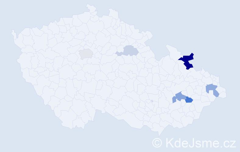 Příjmení: 'Iljaševič', počet výskytů 13 v celé ČR