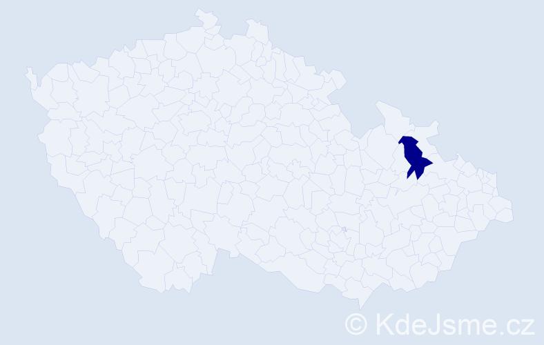 """Příjmení: '""""Havránková Hanusová""""', počet výskytů 1 v celé ČR"""