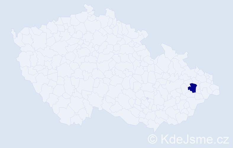 """Příjmení: '""""Kara Slimane""""', počet výskytů 1 v celé ČR"""