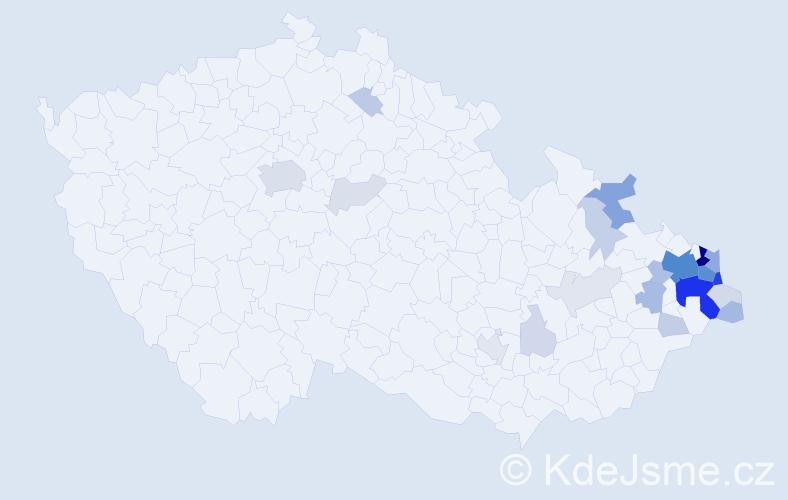 Příjmení: 'Lapiš', počet výskytů 102 v celé ČR